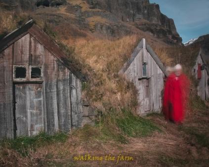 walkingthefarm